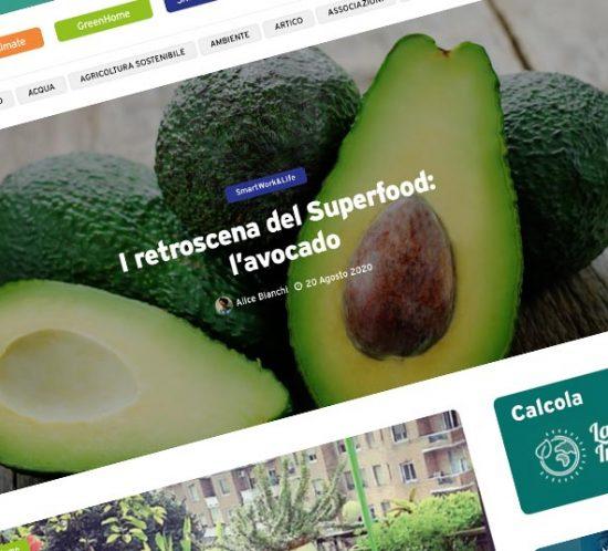 e-mage - Web design